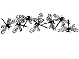 dragonfly line
